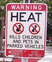 hot-cars